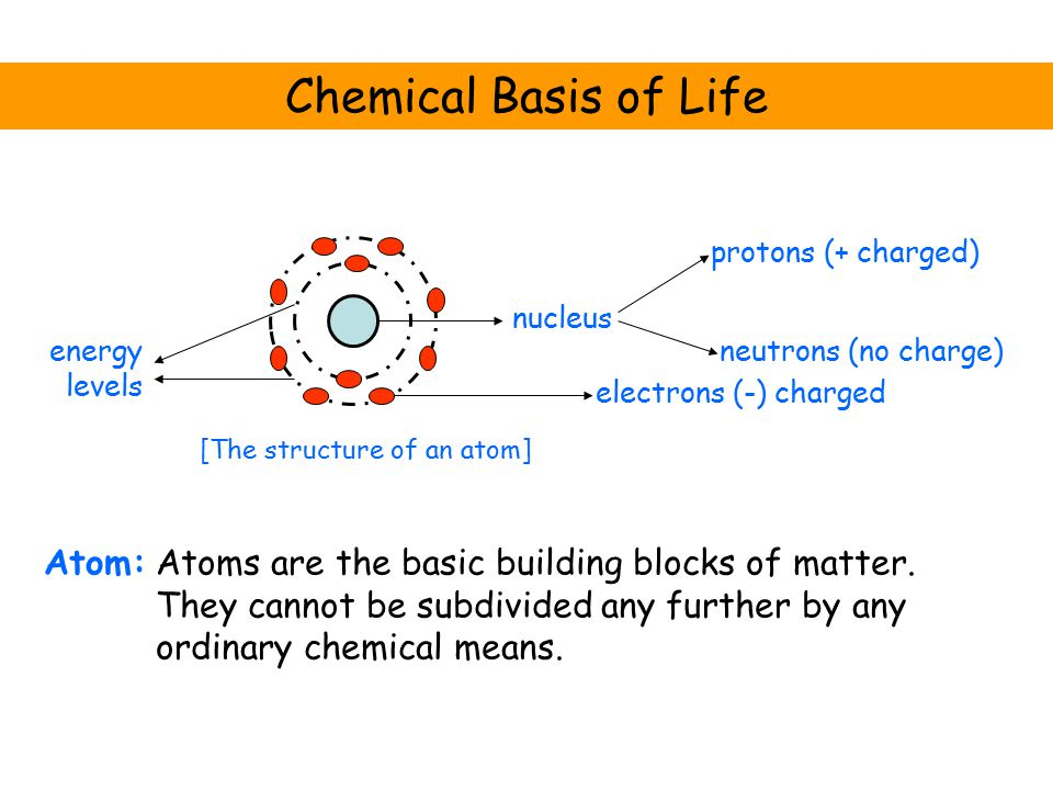 Chemical Basis of Life Atom: nucleus electrons (-) charged neutrons (no charge) protons (+ charged) energy levels [The structure of an atom] Atoms are the basic building blocks of matter.