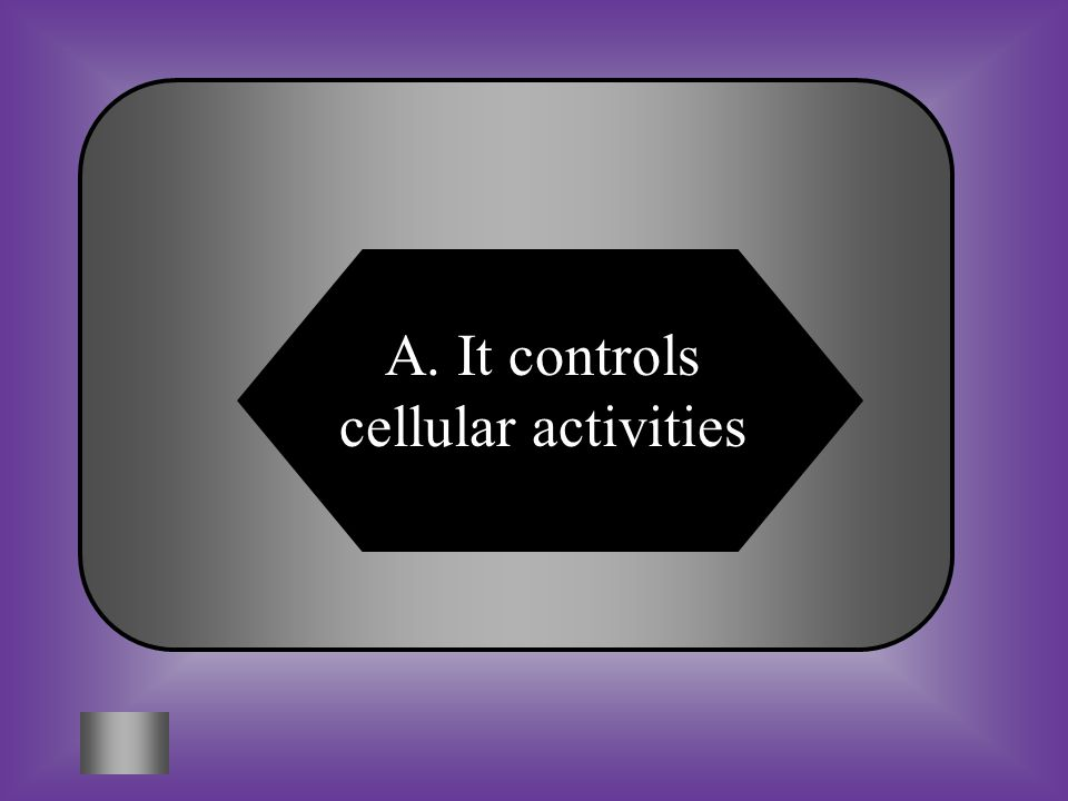 A:B: It gives the cell shape and support C:D: Both of theseNone of these It controls cellular activities #6 The nucleus in a cell contains chromosomes made of DNA material.