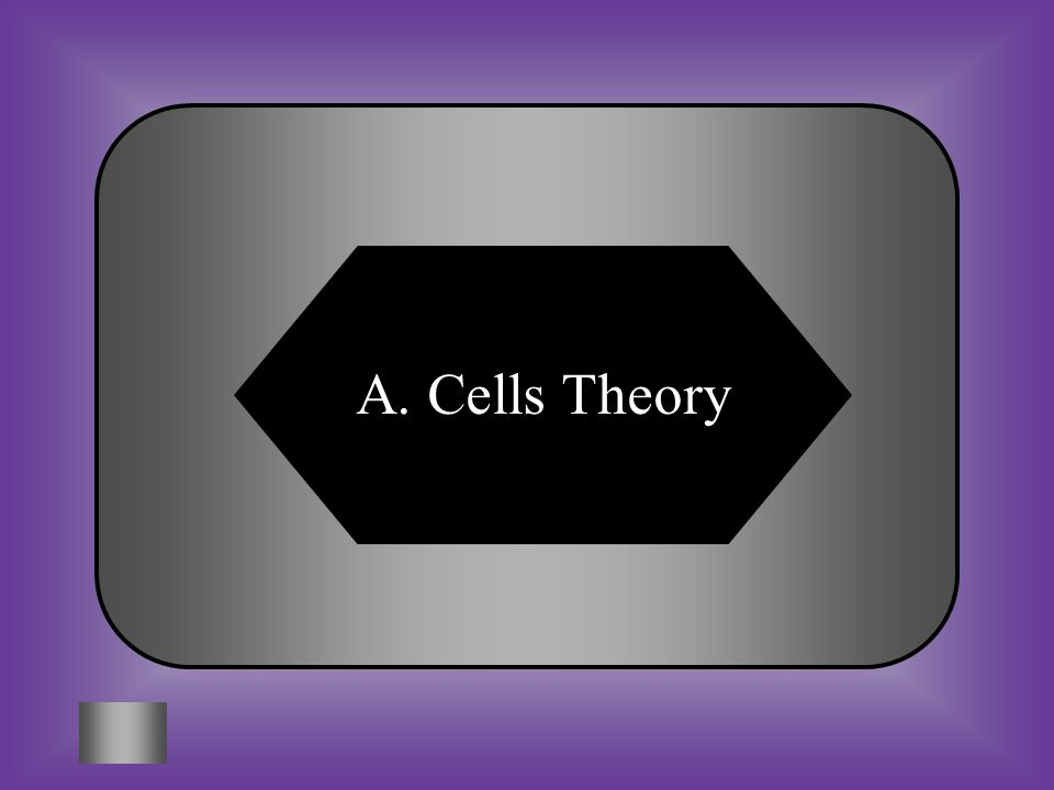 A: B: Cell Theory Organism Theory #12 *All organisms are made up of one or more cells.