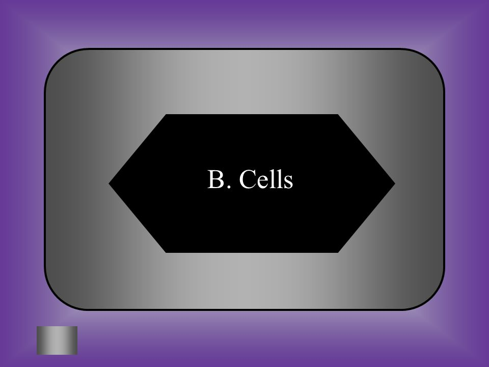 A:B: PlasmaCells #3 All organisms are composed of __________. C:D: CytoplasmInorganic matter