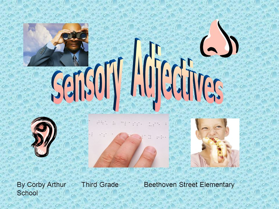 Read each of the sentences.Is the underlined word a sensory adjective.