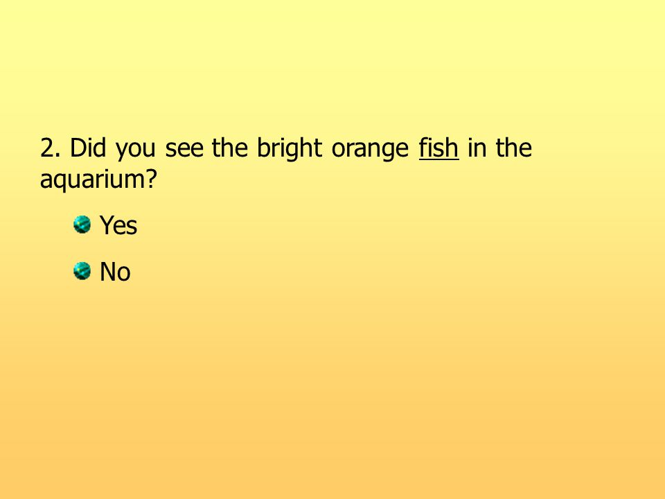 2. Did you see the bright orange fish in the aquarium? Yes No