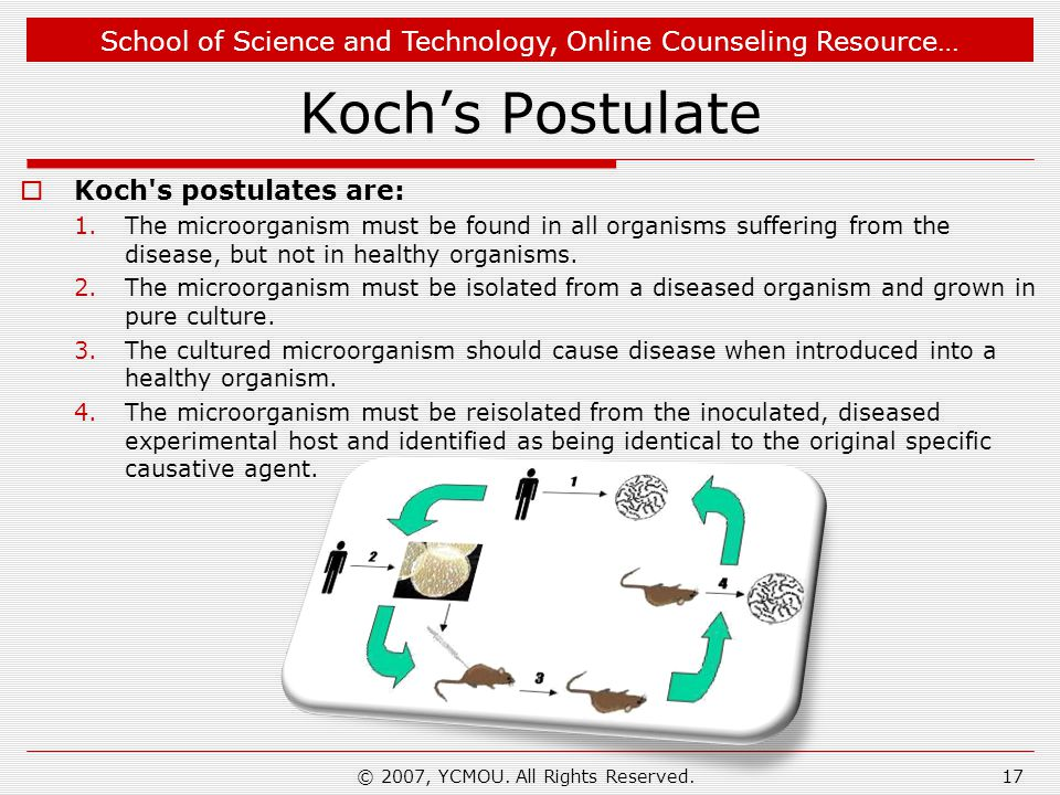 School of Science and Technology, Online Counseling Resource… Koch's Postulate  Koch s postulates are: 1.The microorganism must be found in all organisms suffering from the disease, but not in healthy organisms.