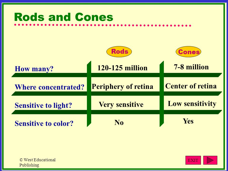 © West Educational Publishing How many.Where concentrated.