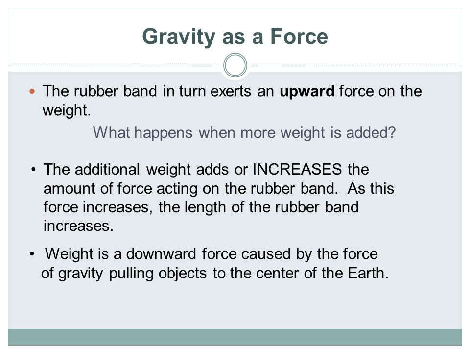 Gravity as a Force The rubber band in turn exerts an upward force on the weight. What happens when more weight is added? The additional weight adds or