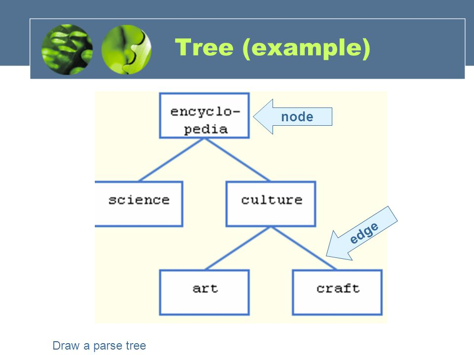 Tree characteristics Consists of nodes connected by edges.