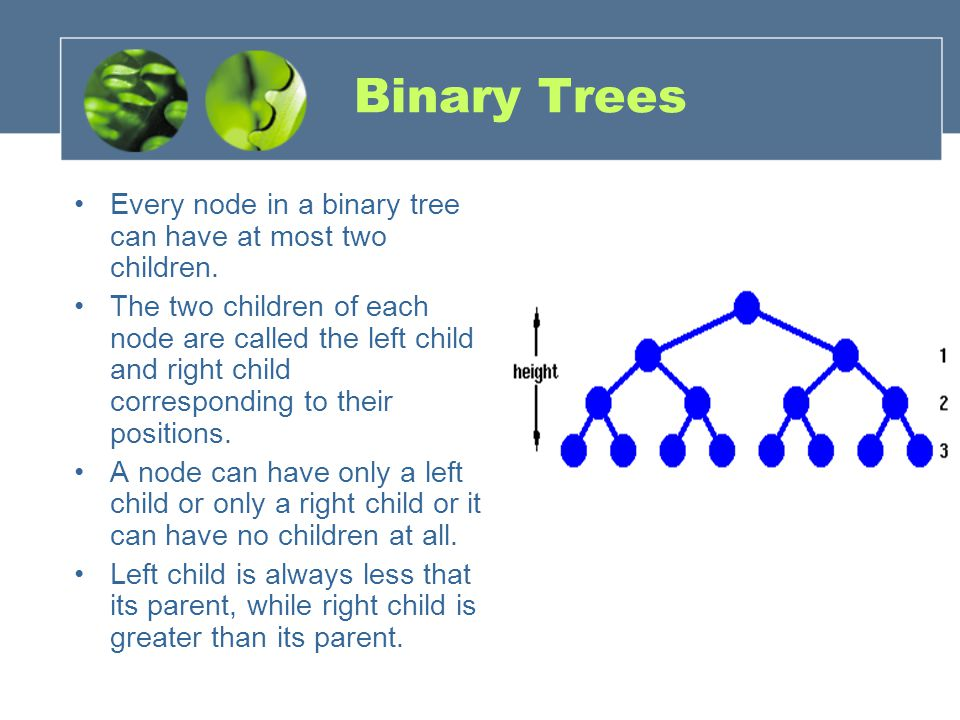 Binary Trees Every node in a binary tree can have at most two children.