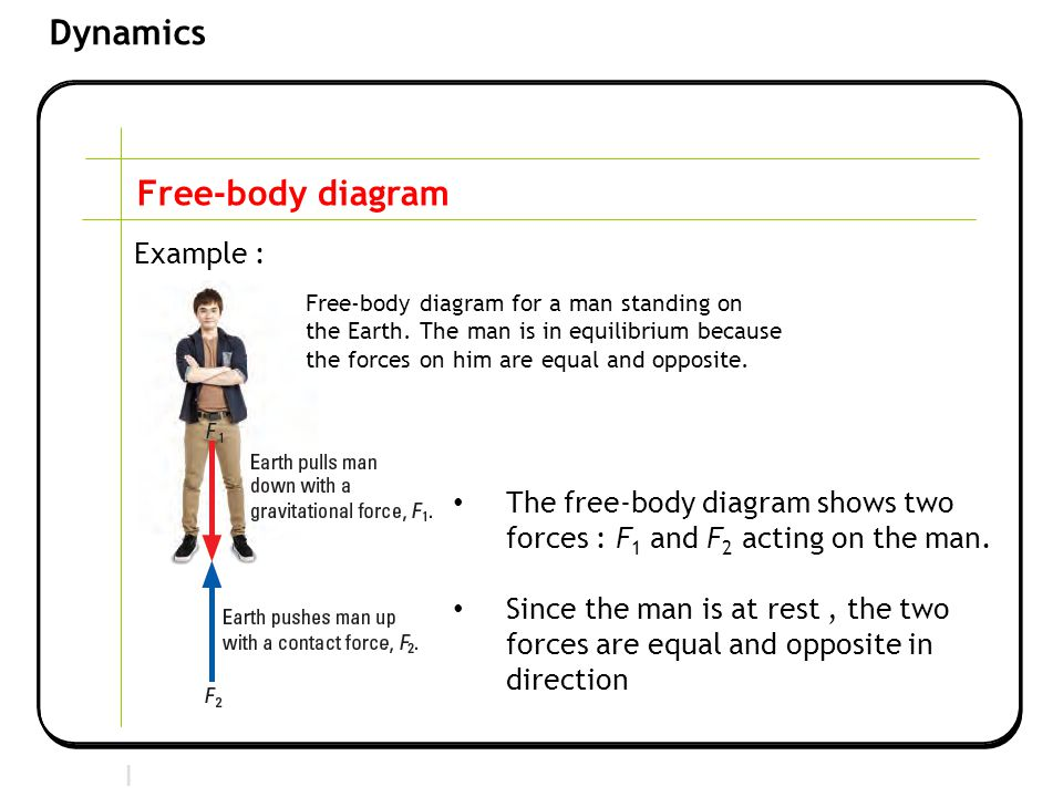 Section 2 | Newtonian Mechanics Dynamics Free-body diagram Example : The free-body diagram shows two forces : F 1 and F 2 acting on the man.