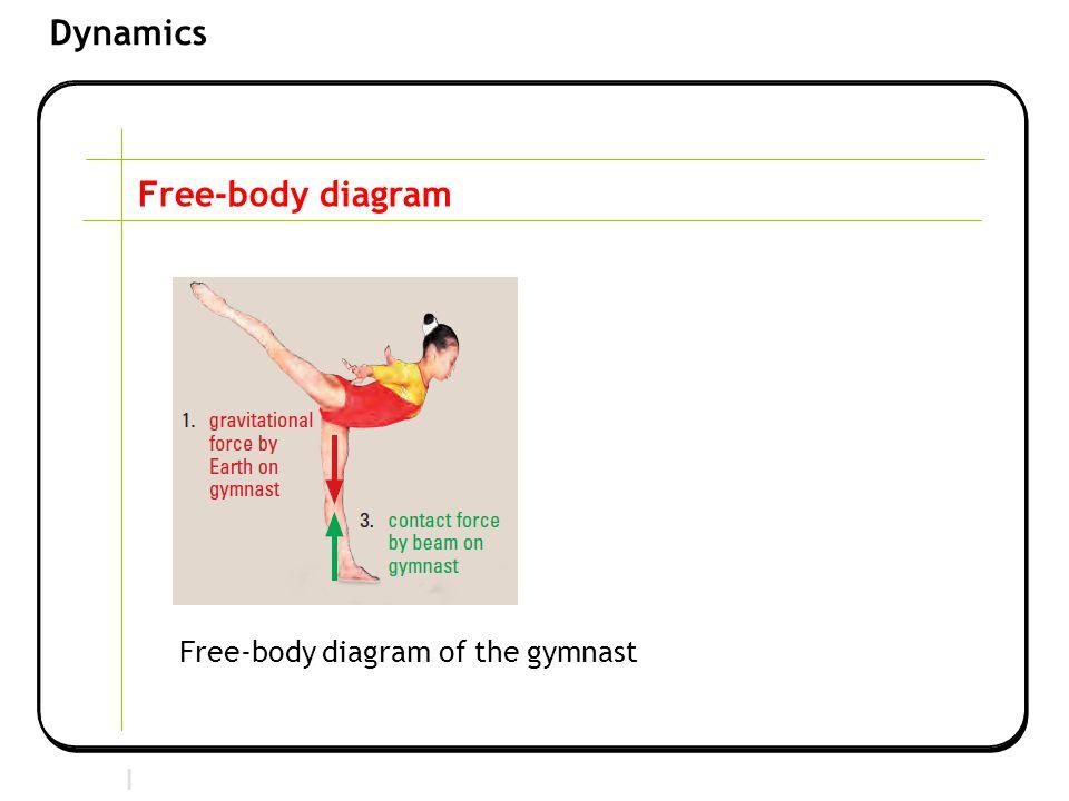 Section 2 | Newtonian Mechanics Dynamics Free-body diagram Free-body diagram of the gymnast