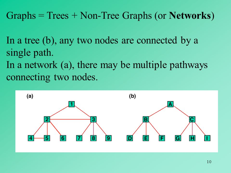10 Graphs = Trees + Non-Tree Graphs (or Networks) In a tree (b), any two nodes are connected by a single path. In a network (a), there may be multiple