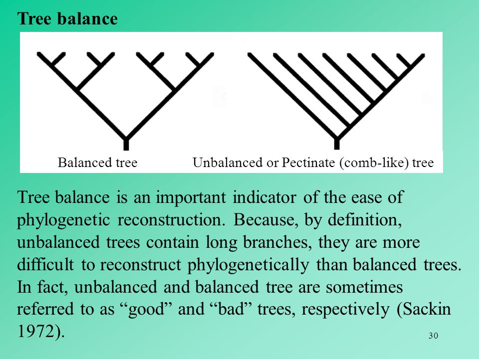 30 Tree balance Tree balance is an important indicator of the ease of phylogenetic reconstruction. Because, by definition, unbalanced trees contain lo