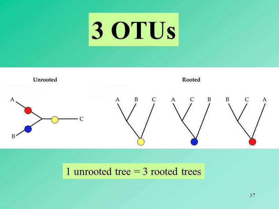 37 3 OTUs 1 unrooted tree = 3 rooted trees