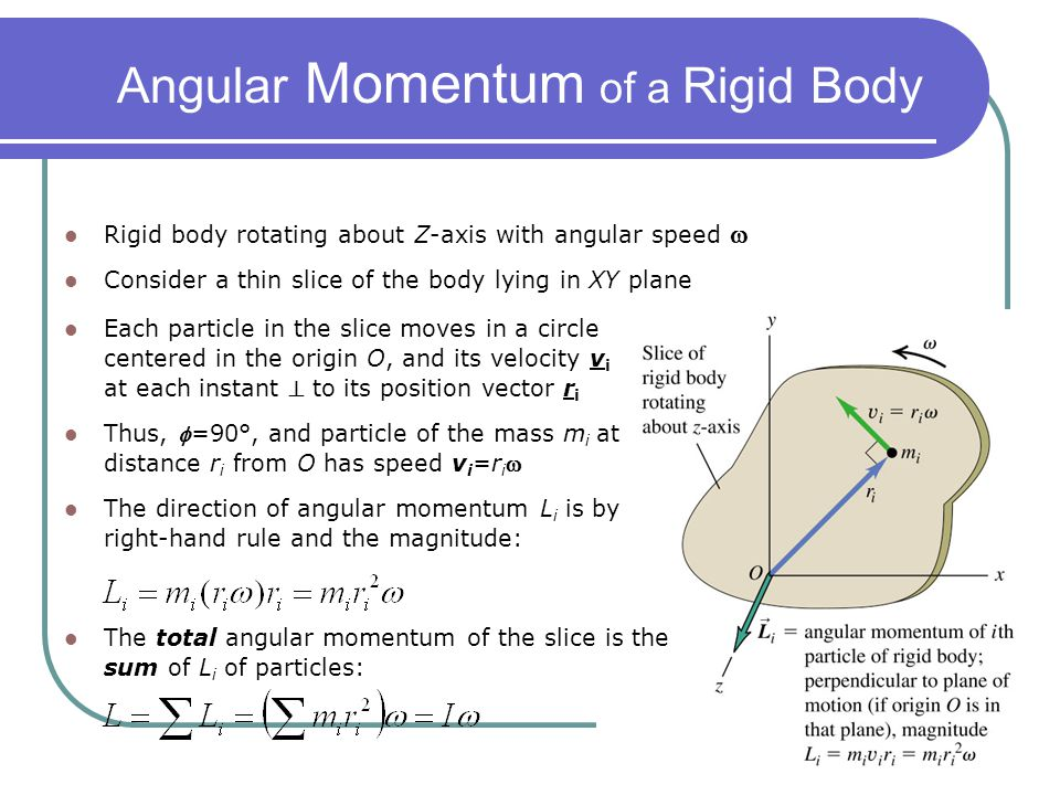 Angular Momentum of a Rigid Body Rigid body rotating about Z-axis with angular speed  Consider a thin slice of the body lying in XY plane Each partic