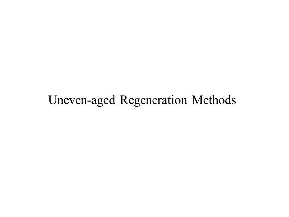 Uneven-aged Regeneration Methods