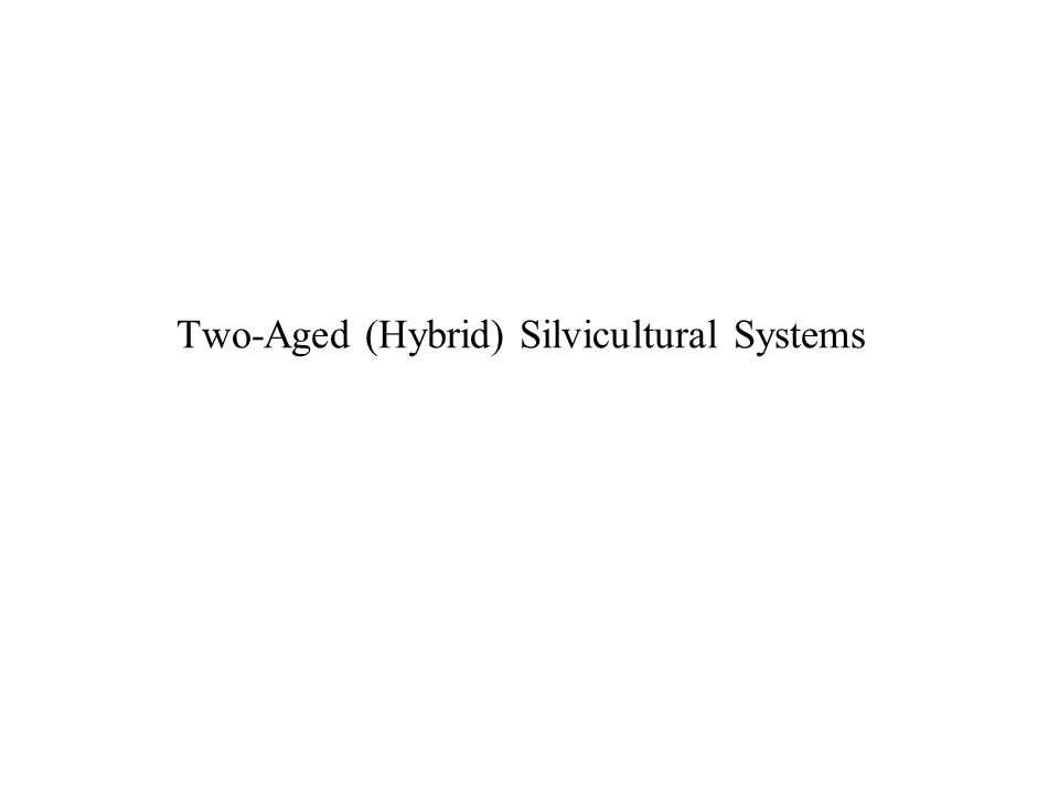 Two-Aged (Hybrid) Silvicultural Systems