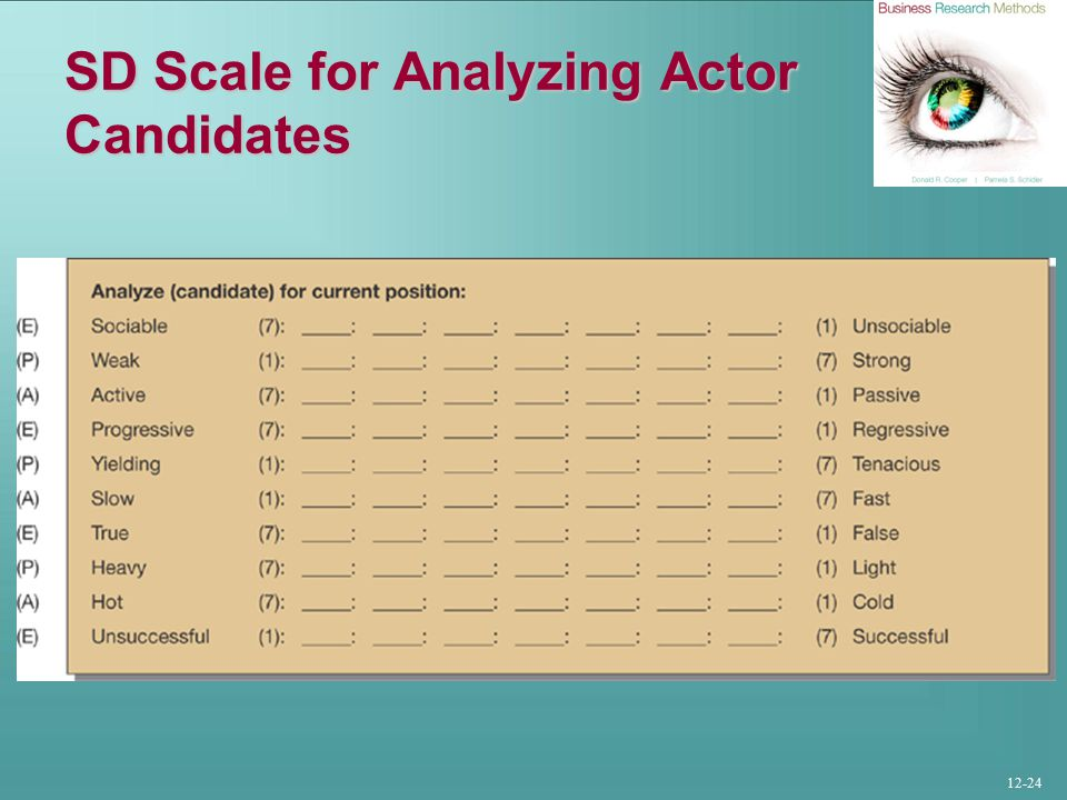 12-24 SD Scale for Analyzing Actor Candidates
