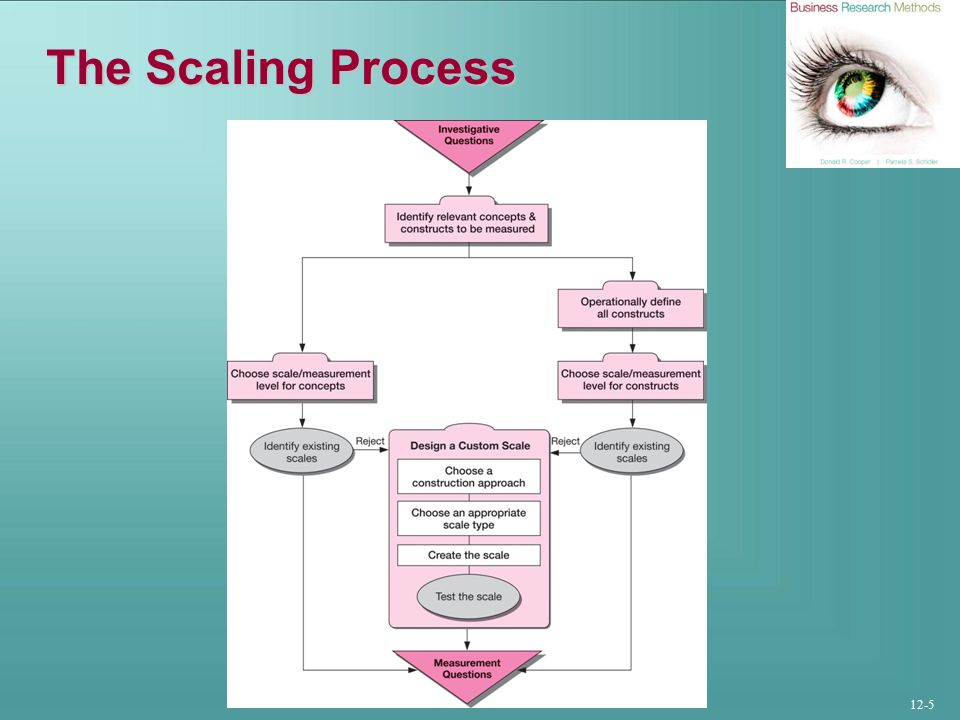 12-5 The Scaling Process