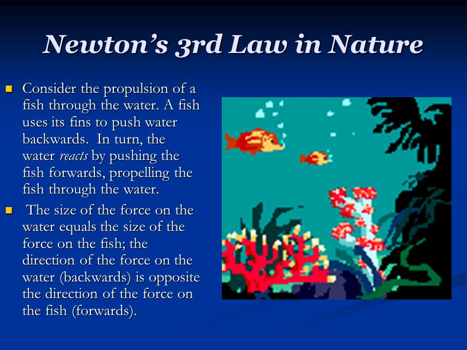 Newton's 3rd Law in Nature Consider the propulsion of a fish through the water. A fish uses its fins to push water backwards. In turn, the water react