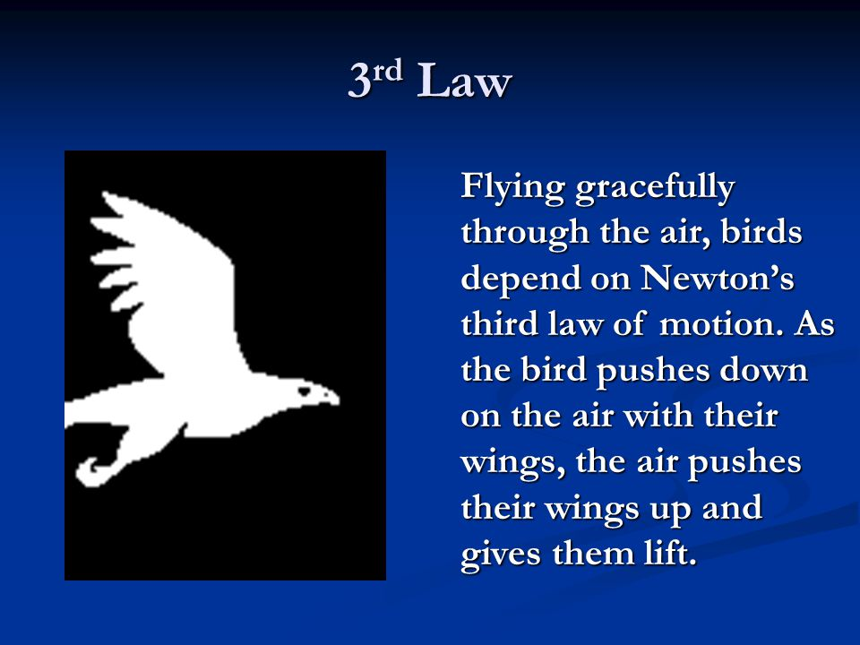 3 rd Law Flying gracefully through the air, birds depend on Newton's third law of motion. As the bird pushes down on the air with their wings, the air
