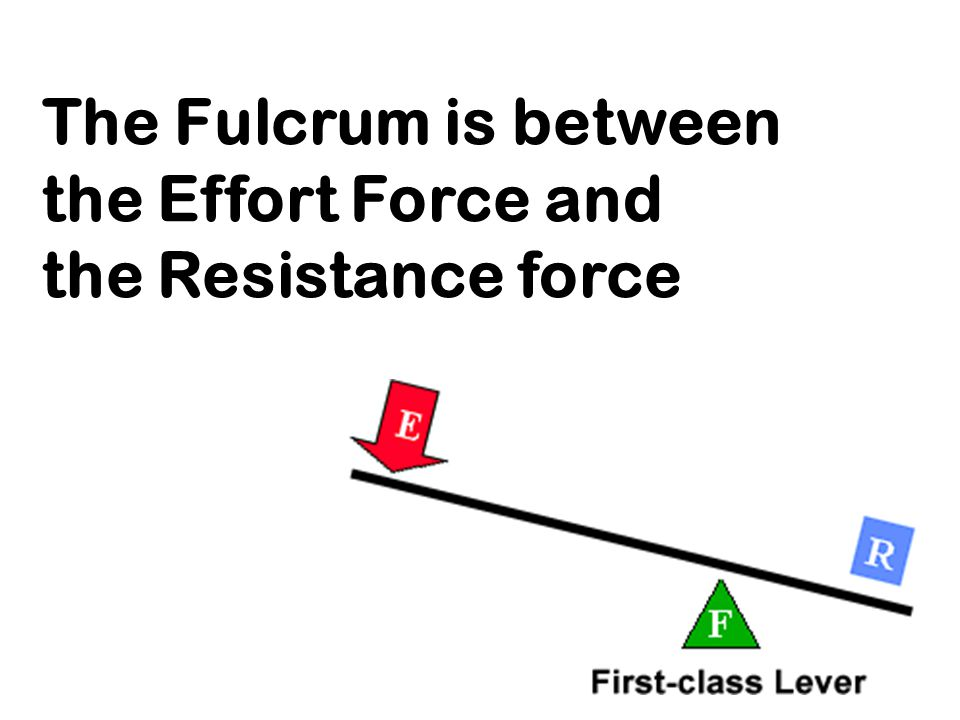 The Fulcrum is between the Effort Force and the Resistance force