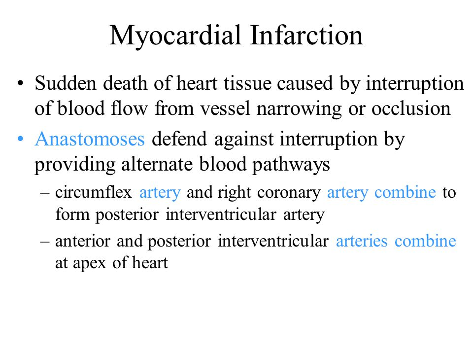 Myocardial Infarction Sudden death of heart tissue caused by interruption of blood flow from vessel narrowing or occlusion Anastomoses defend against interruption by providing alternate blood pathways –circumflex artery and right coronary artery combine to form posterior interventricular artery –anterior and posterior interventricular arteries combine at apex of heart
