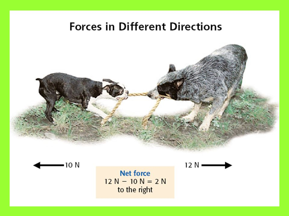 Forces in the Different Directions Consider two dogs playing tug of war with a short piece of rope. Each is exerting a force, but in the opposite dire