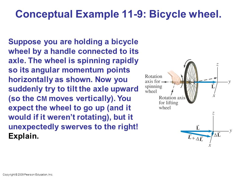 Copyright © 2009 Pearson Education, Inc. Conceptual Example 11-9: Bicycle wheel.
