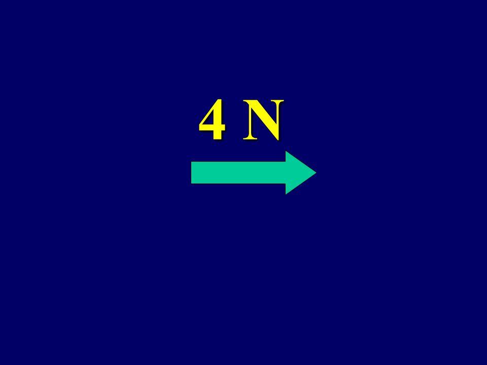 What is the net force? 6 N 2N