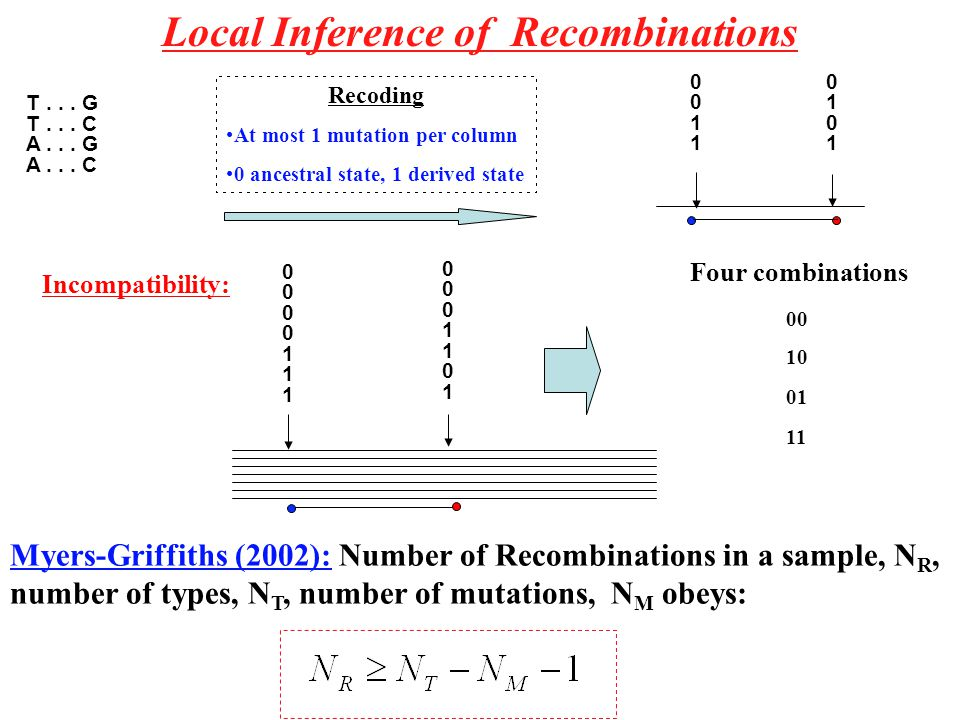 Local Inference of Recombinations 00001110000111 00011010001101 00 10 01 11 Four combinations Incompatibility: Myers-Griffiths (2002): Number of Recombinations in a sample, N R, number of types, N T, number of mutations, N M obeys: 00110011 01010101 T...
