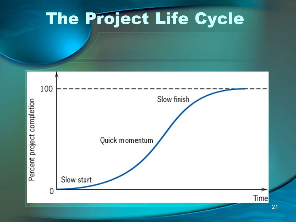 21 The Project Life Cycle