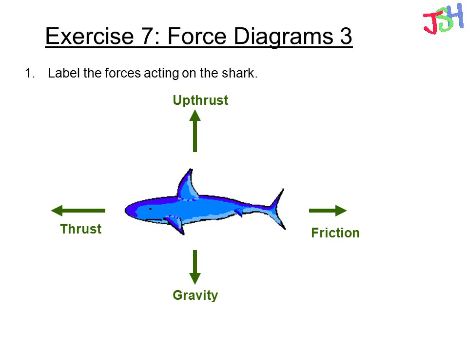 Exercise 7: Force Diagrams 3 1.Label the forces acting on the shark. Thrust Friction Gravity Upthrust