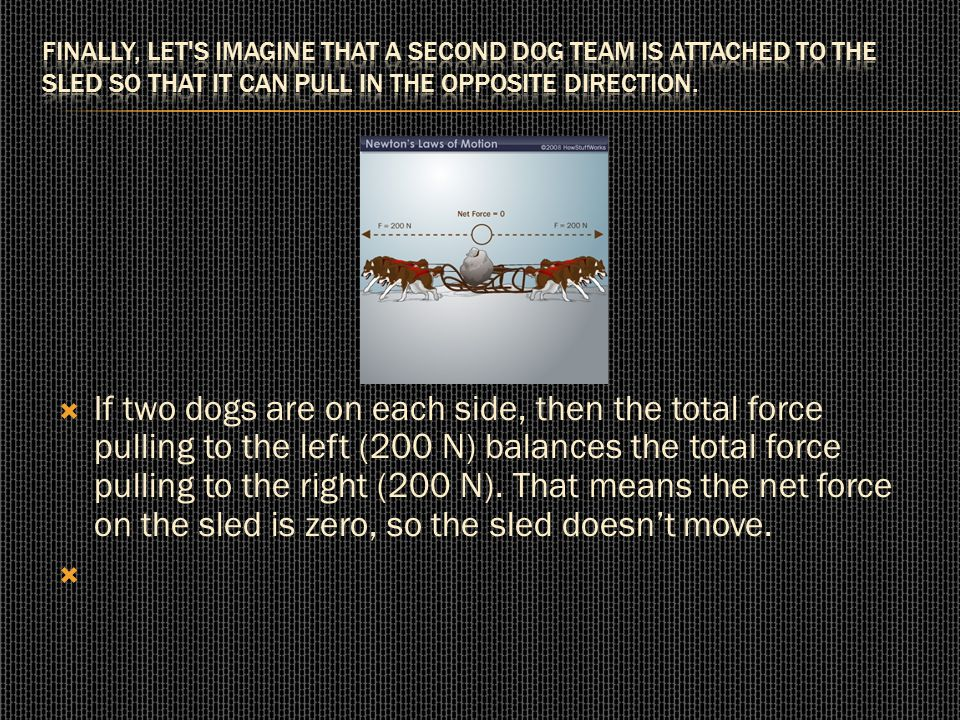  If two dogs are on each side, then the total force pulling to the left (200 N) balances the total force pulling to the right (200 N). That means the