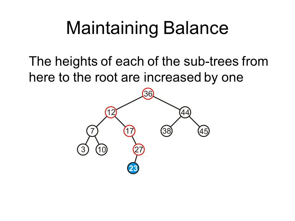 Maintaining Balance The heights of each of the sub-trees from here to the root are increased by one