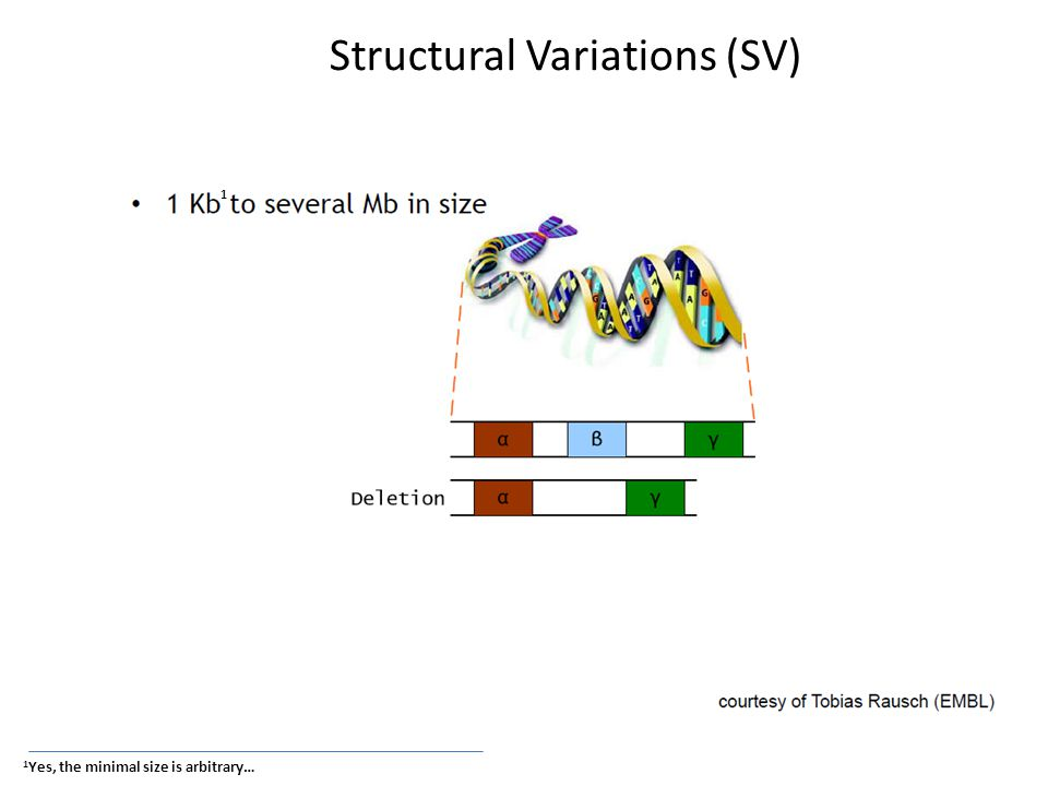 SV detection with Read pairs 1)trim the data 2)align data to reference genome 3)remove PCR duplicates 4)SV calling
