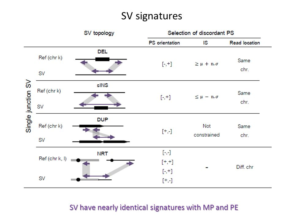SV signatures SV have nearly identical signatures with MP and PE