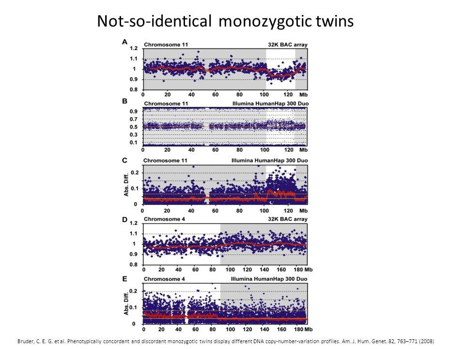 Not-so-identical monozygotic twins Bruder, C. E. G.