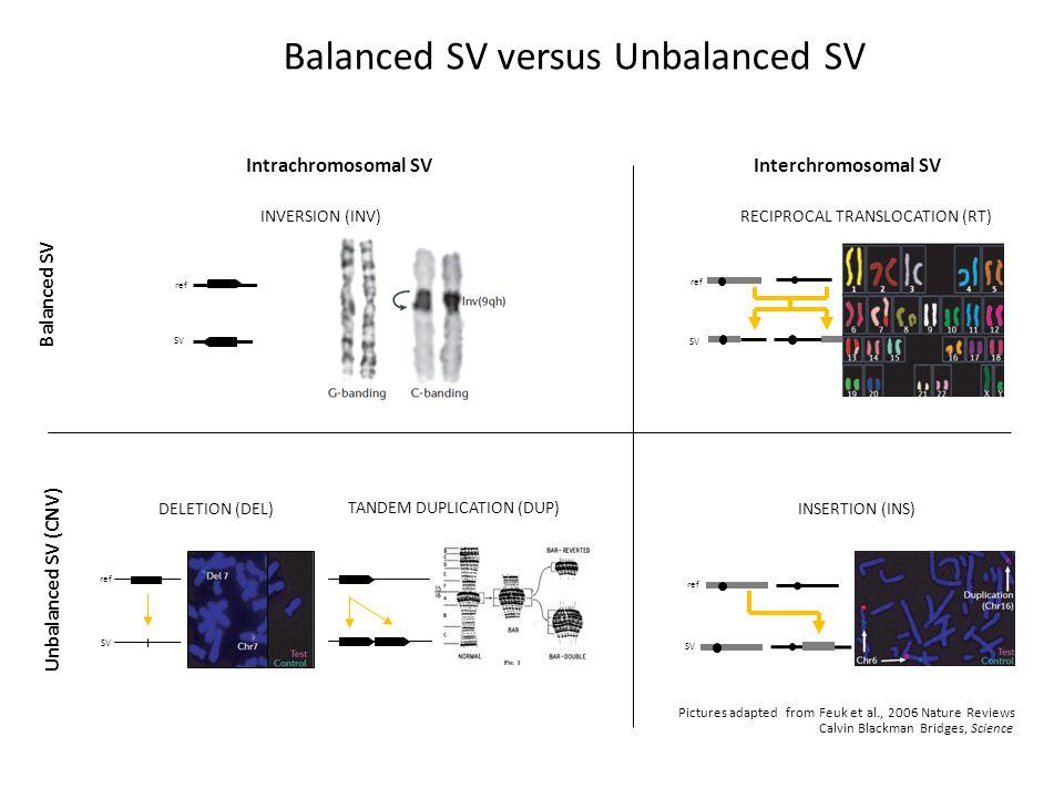 Korbel et al, Science 2007 SV in the Human genome