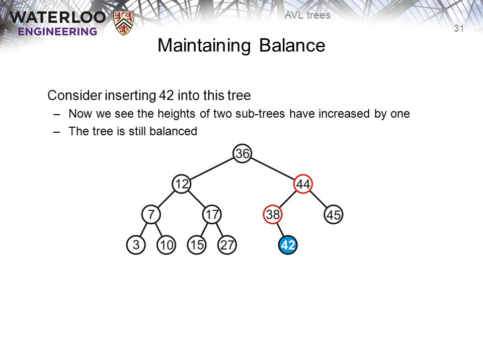 31 AVL trees Maintaining Balance Consider inserting 42 into this tree –Now we see the heights of two sub-trees have increased by one –The tree is stil
