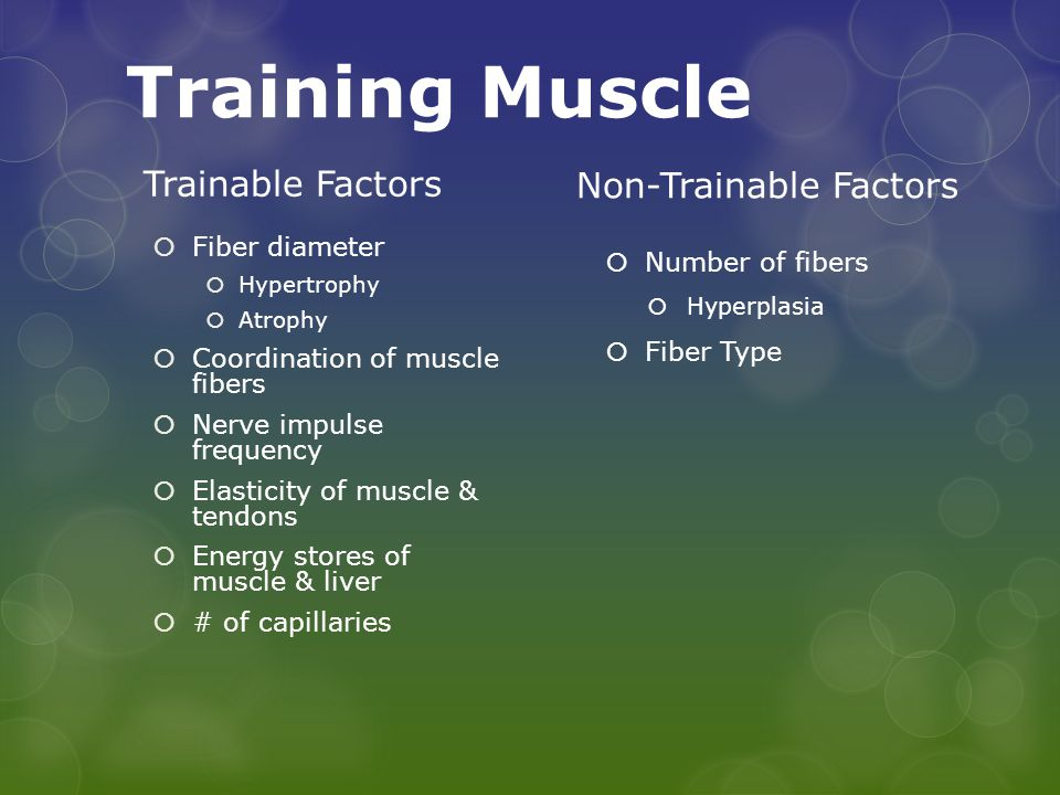 Training Muscle Trainable Factors  Fiber diameter  Hypertrophy  Atrophy  Coordination of muscle fibers  Nerve impulse frequency  Elasticity of muscle & tendons  Energy stores of muscle & liver  # of capillaries Non-Trainable Factors  Number of fibers  Hyperplasia  Fiber Type