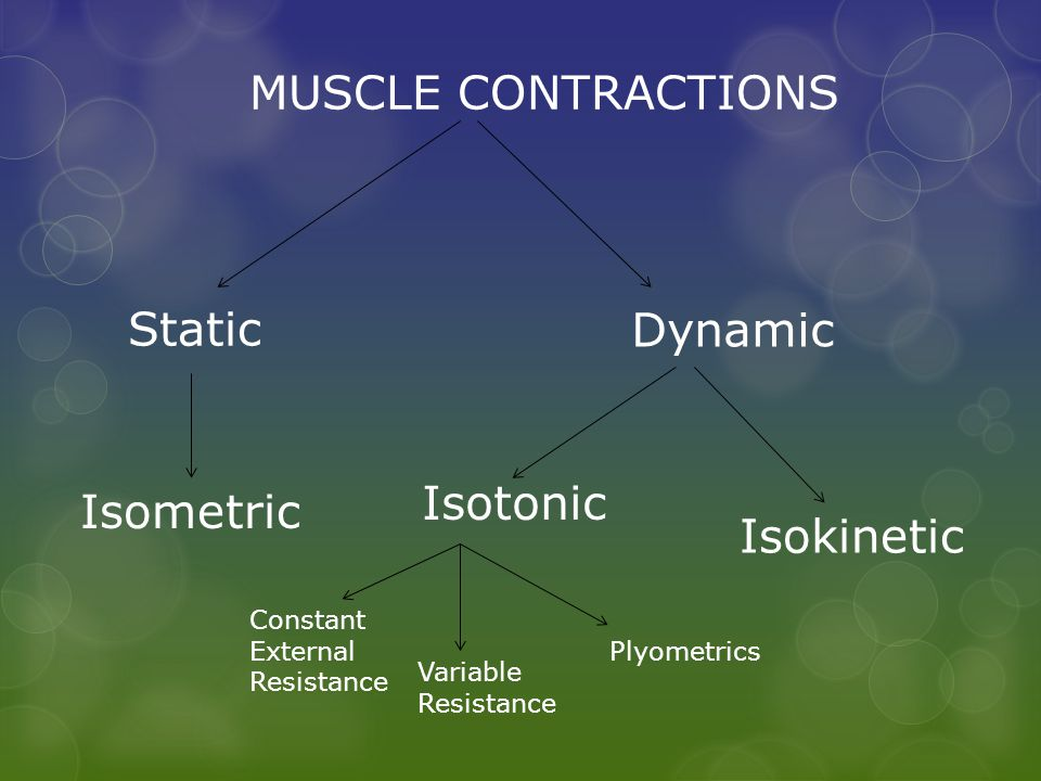 MUSCLE CONTRACTIONS Static Dynamic Isometric Isotonic Isokinetic Constant External Resistance Variable Resistance Plyometrics