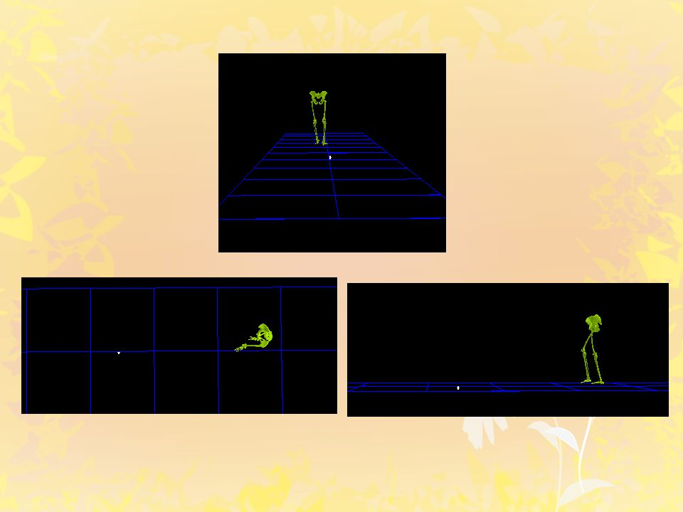 Kinematic measurement and the gait cycle -40 -20 0 20 050100 Angle (degrees) % of gait cycle Dorsi flexion