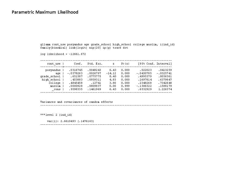 Parametric Maximum Likelihood