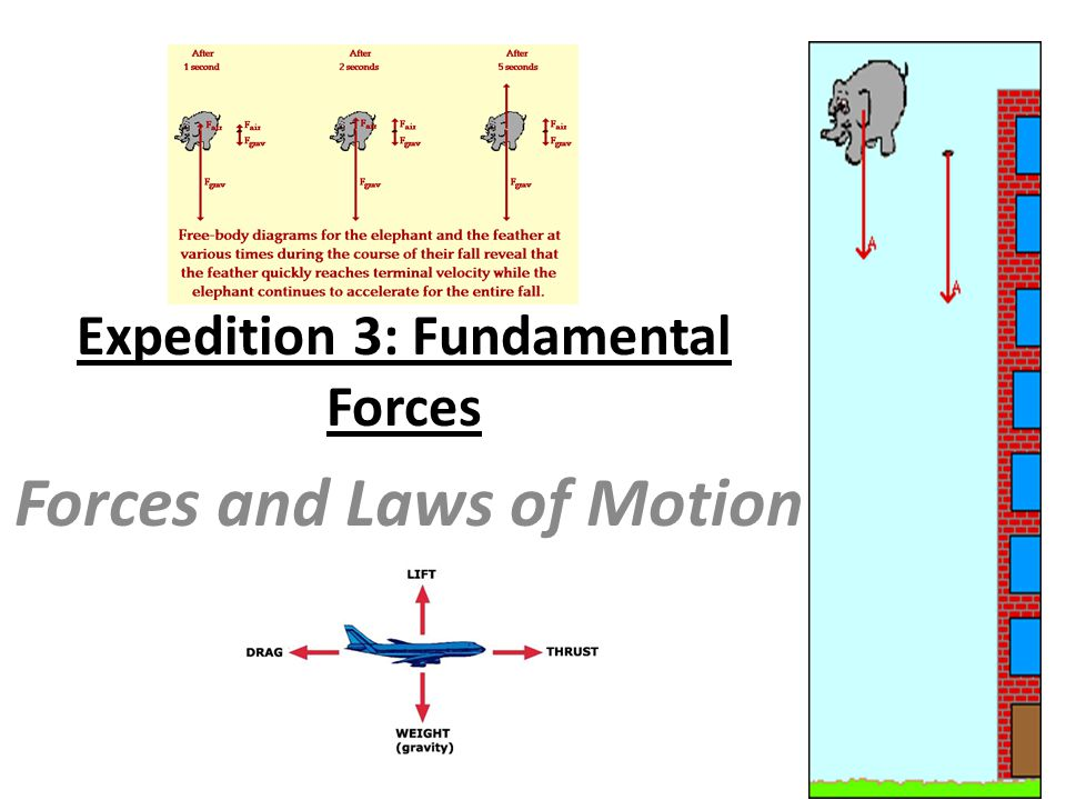 Expedition 3: Fundamental Forces Forces and Laws of Motion