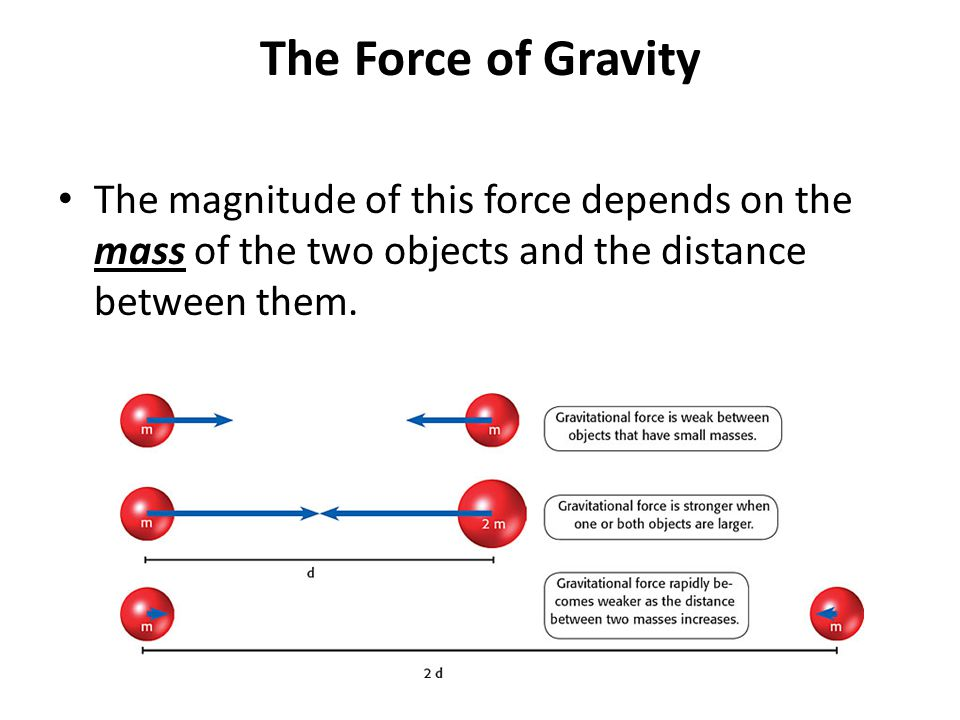 The Force of Gravity The magnitude of this force depends on the mass of the two objects and the distance between them.