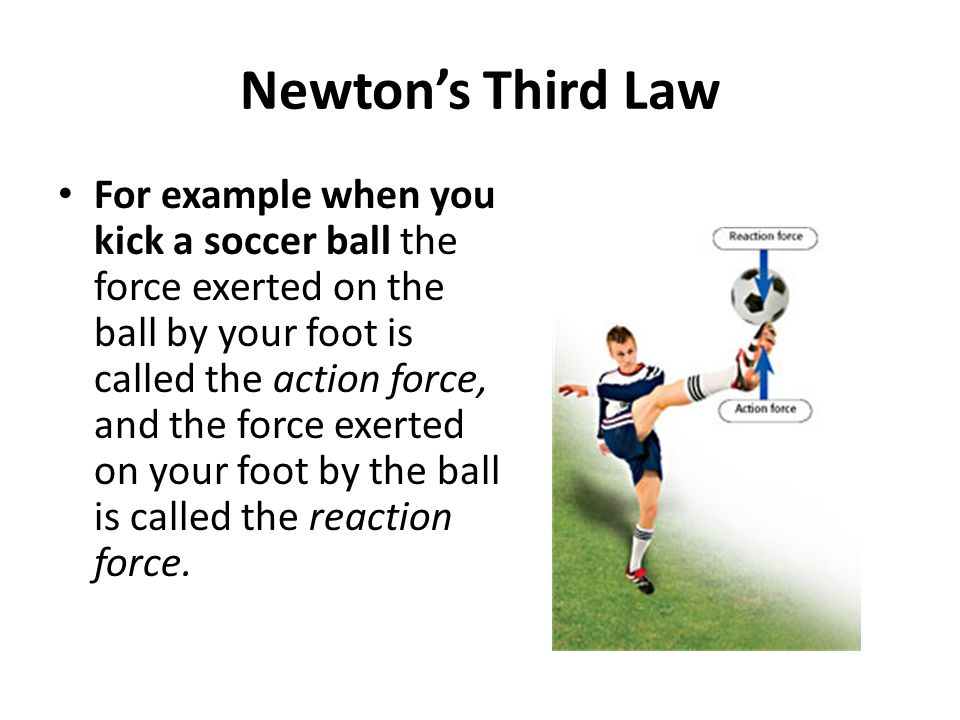 Newton's Third Law For example when you kick a soccer ball the force exerted on the ball by your foot is called the action force, and the force exerted on your foot by the ball is called the reaction force.