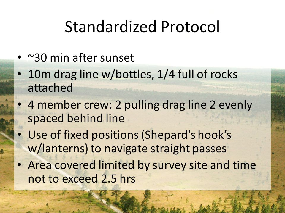 Standardized Protocol ~30 min after sunset 10m drag line w/bottles, 1/4 full of rocks attached 4 member crew: 2 pulling drag line 2 evenly spaced behi