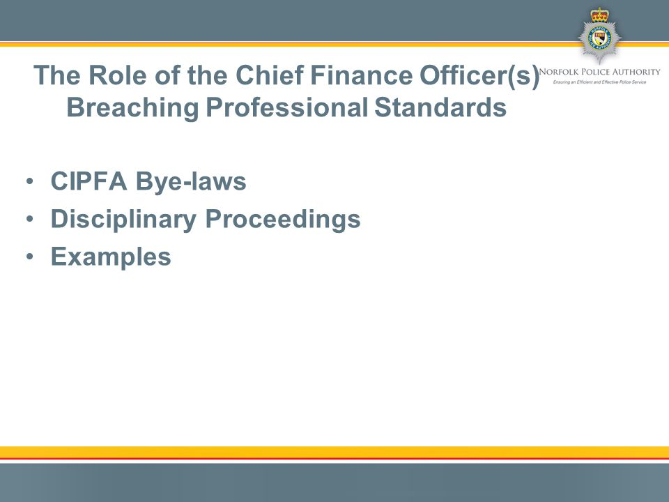 CIPFA Bye-laws Disciplinary Proceedings Examples The Role of the Chief Finance Officer(s) Breaching Professional Standards