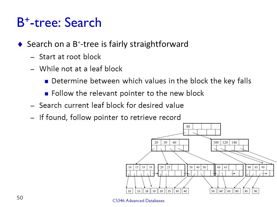 B + -tree: Search  Search on a B + -tree is fairly straightforward – Start at root block – While not at a leaf block Determine between which values in the block the key falls Follow the relevant pointer to the new block – Search current leaf block for desired value – If found, follow pointer to retrieve record CS346 Advanced Databases 50