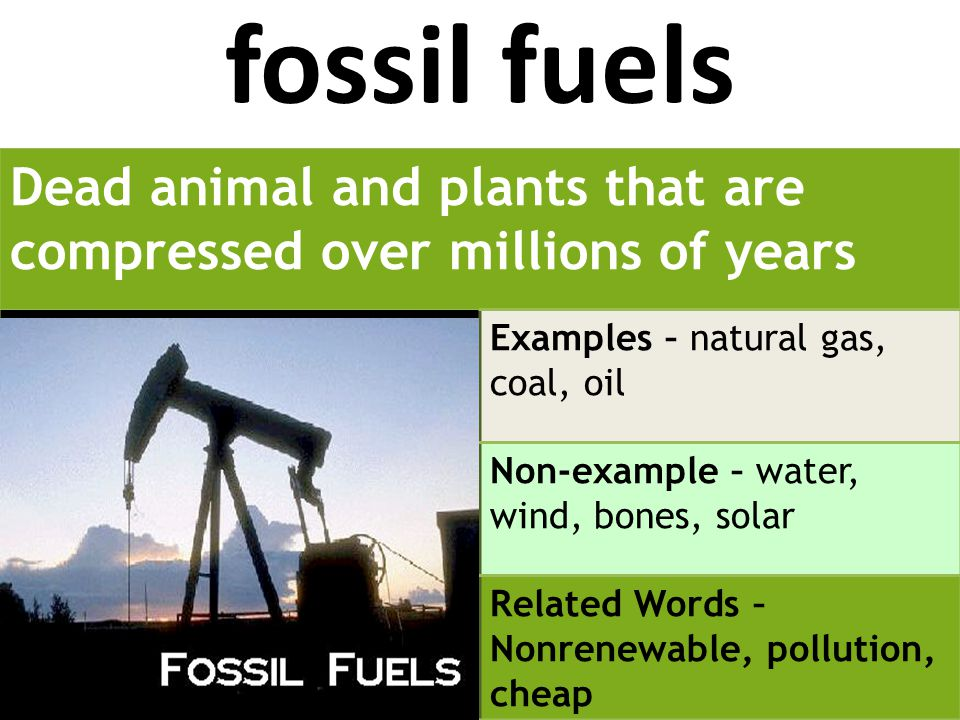 fossil fuels Dead animal and plants that are compressed over millions of years Examples – natural gas, coal, oil Non-example – water, wind, bones, solar Related Words – Nonrenewable, pollution, cheap