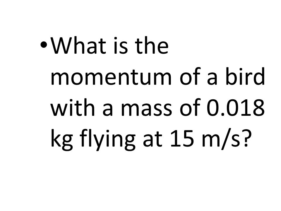 What is the momentum of a bird with a mass of 0.018 kg flying at 15 m/s